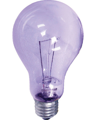 Image of Clear Light Bulb A21-100W