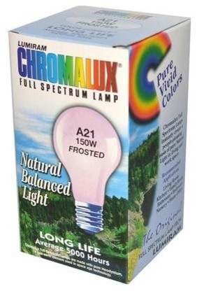 Image of Frosted Light Bulb A21-75W