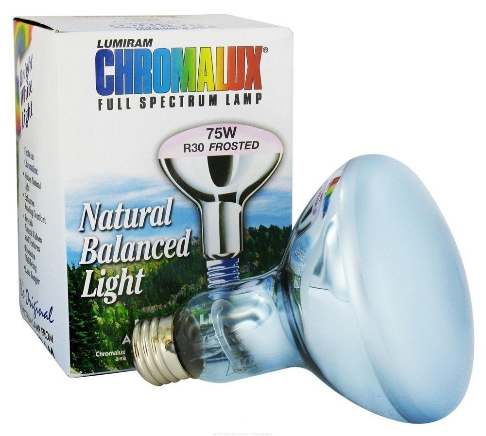 Image of Frosted Reflector Light Bulb R30-72W