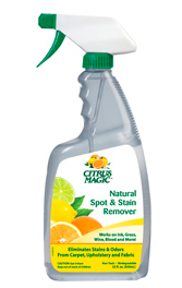 Image of Spot & Stain Remover Spray