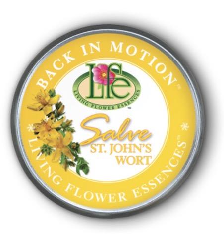 Image of Back in Motion Salve Tin (St. John's Wort)