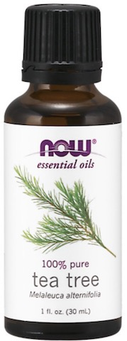 Image of Essential Oil Tea Tree