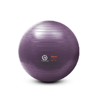 Image of Small Exercise Ball- Plum