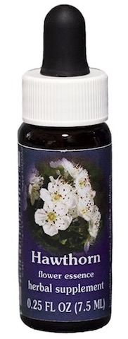 Image of Flower Essence Hawthorn Dropper