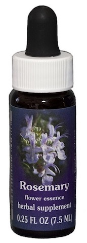 Image of Flower Essence Rosemary Dropper