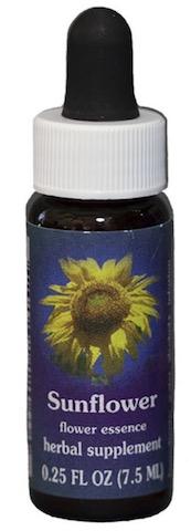 Image of Flower Essence Sunflower Dropper