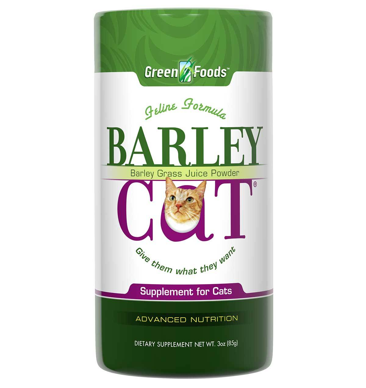 Image of Barley Cat