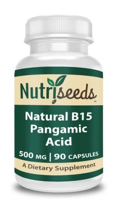 Image of B15 Pangamic Acid