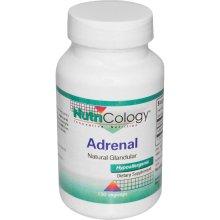 Image of Natural Glandular Adrenal