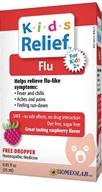 Image of Kids Relief Flu Liquid Raspberry