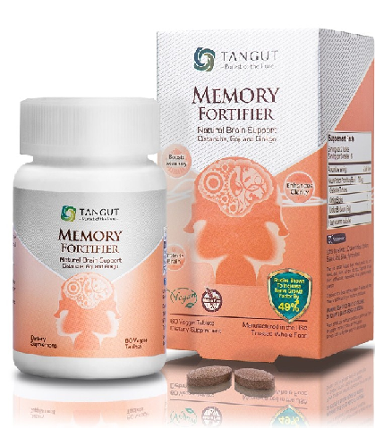 Image of Memory Fortifier