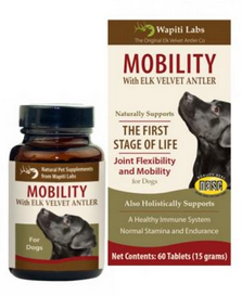Image of Dog Mobility