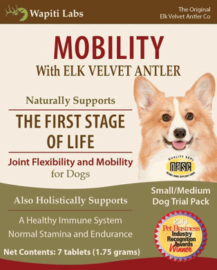 Image of Mobility Trial Pack for Small to Medium Dogs