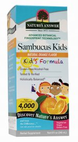 Image of Sambucus Kids Formula Orange Liquid