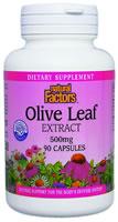 Image of HerbalFactors Olive Leaf Extract 500 mg