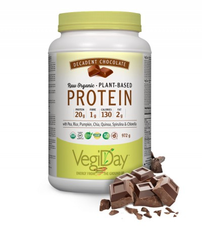 Image of VegiDay Raw Organic Plant Based Protein Decadent Chocolate