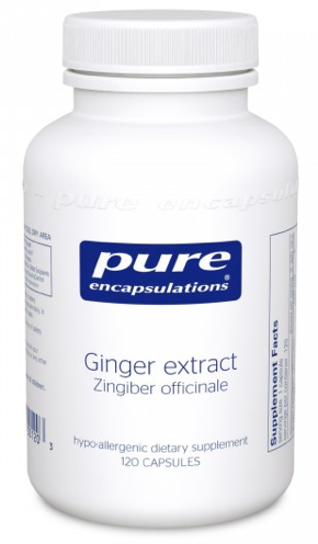 Image of Ginger Extract 500 mg