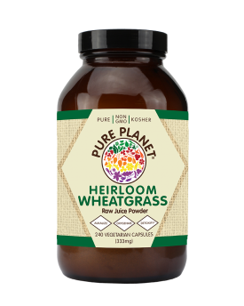 Image of Heirloom Wheatgrass Raw Juice Powder Non-GMO CAPSULE