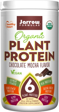 Image of Organic Plant Protein: Chocolate Mocha